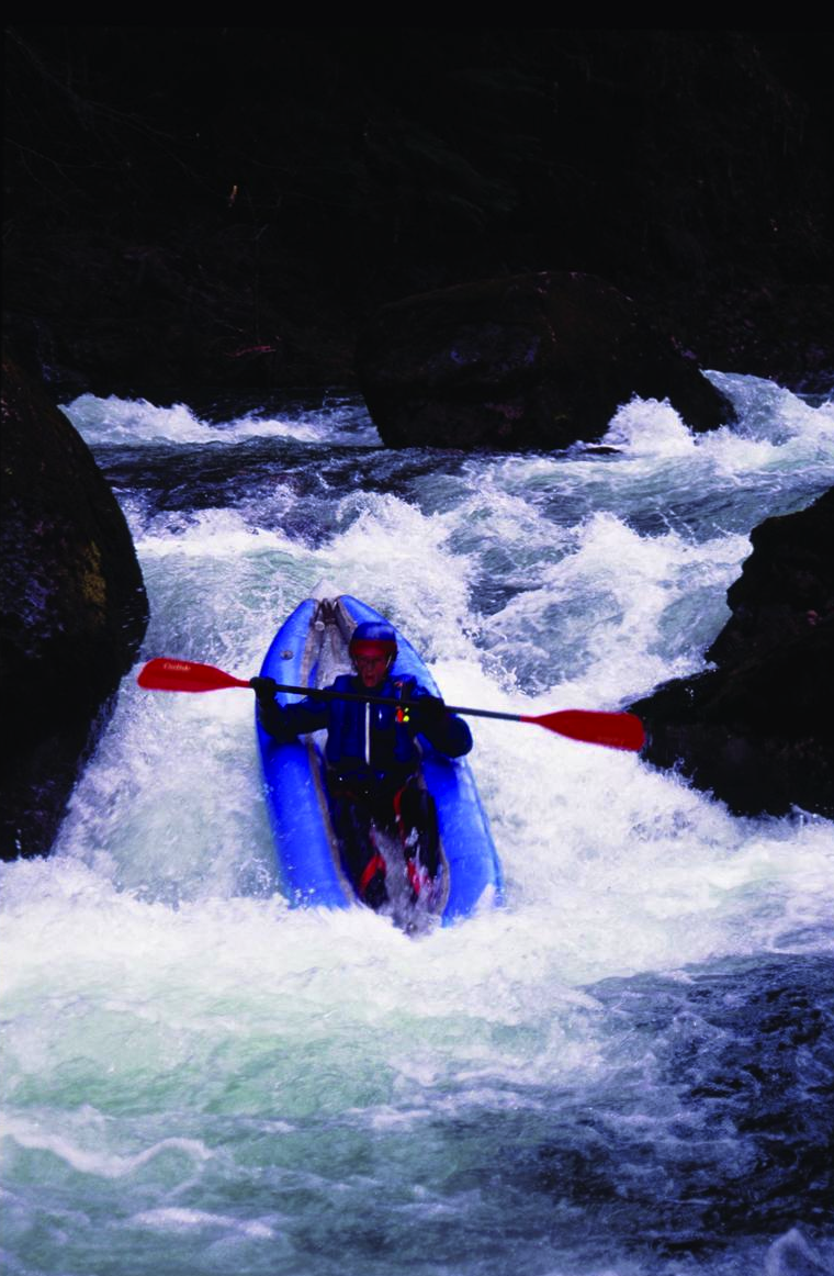 Figure 3. Brice Creek on the Umpqua National Forest qualifies for inclusion in the National Wild and Scenic Rivers System even though the stream has not been recognized by the Forest Service for its outstandingly remarkable whitewater boating. Source: David Stone, Wildland Photography (first appeared in   Oregon Wild: Endangered Forest Wilderness  ).
