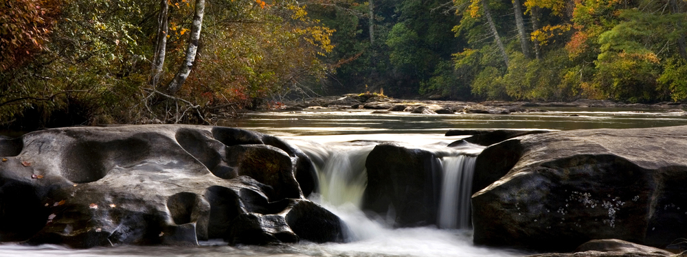 Chattooga River by McIntosh