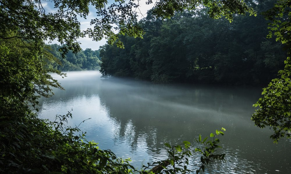 Chattahoochee River at Johns Creek by William Brawley