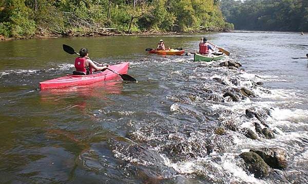 JBPE_090911_CRBI_Two_Run_Creek_Fish_Weir.jpg