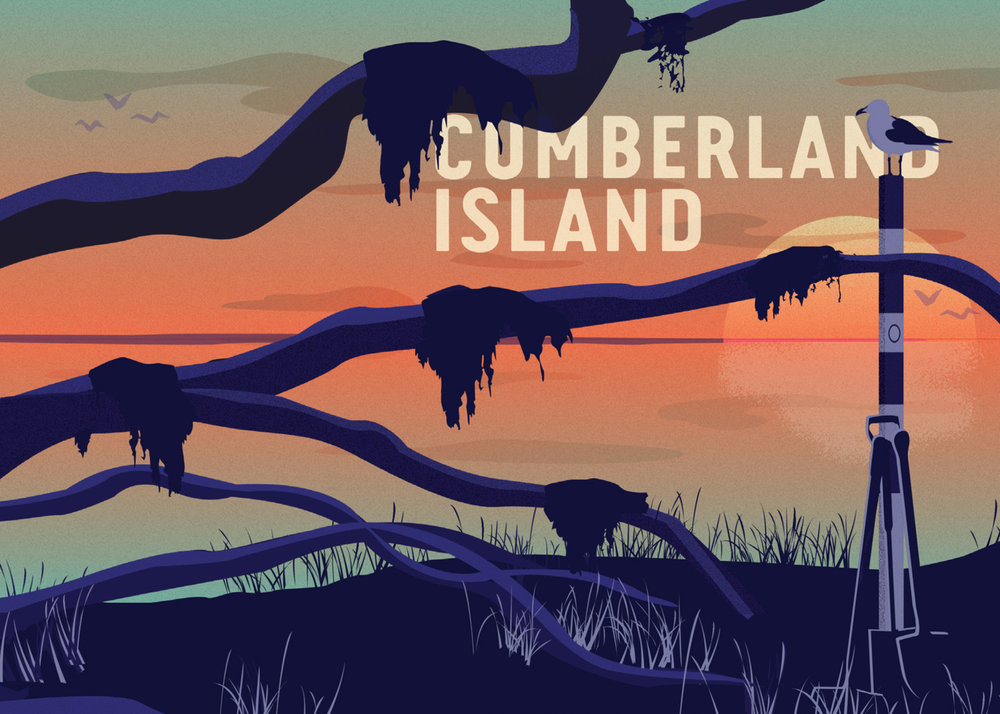 Precious Places Postcard - Cumberland Island.jpg