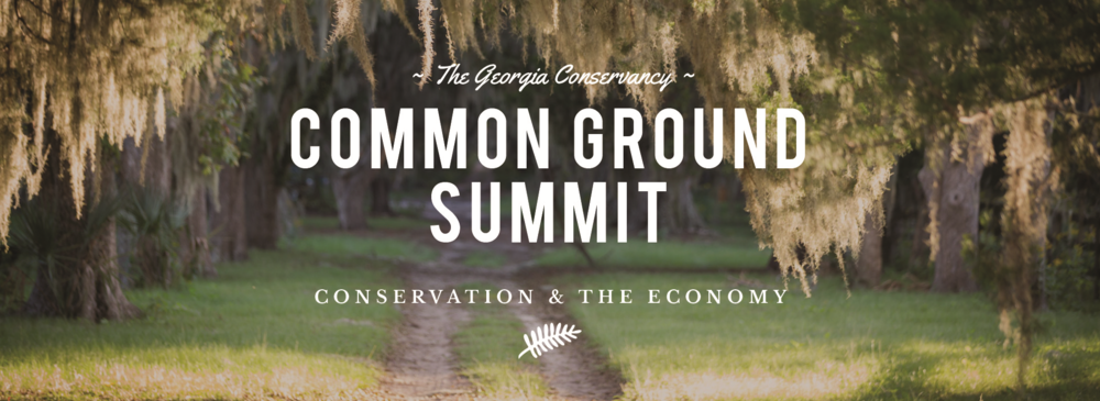 Conservation Summit Banner.png