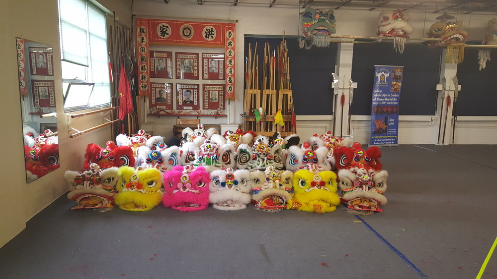 20 Lions Ready for annual performance