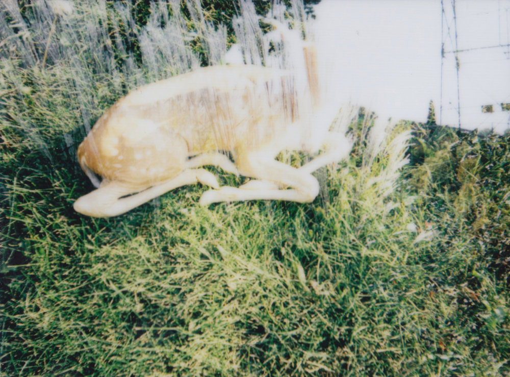 Playing with the double exposure function on my new instax mini 90.