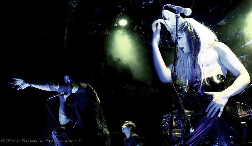 Live Music. Band - Starkiller/Kayvon Zand
