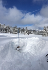 Trail sign buried at Bear Valley in 17 foot snowstorm!