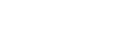 Audire Consultants