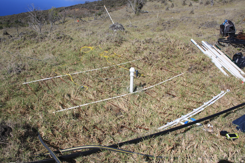 Experimental irrigation system and meter-deep Enviroscan soil probe head in non-native grasslands adjacent to restored native forest stands, Auwahi, Maui island, Hawai`i.