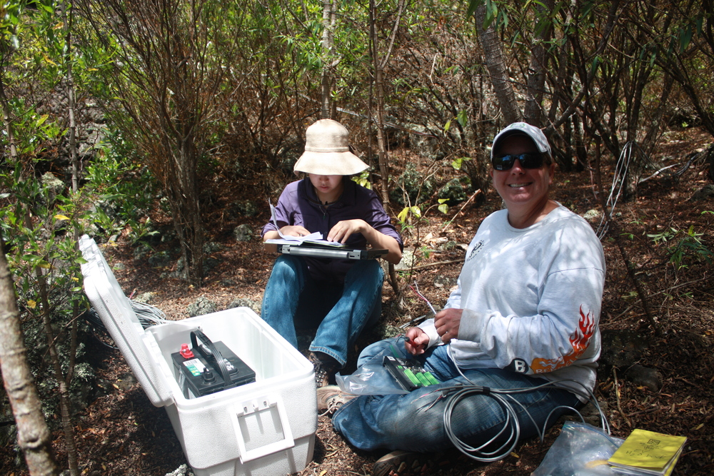 Experimental irrigation system and meter-deep Enviroscan soil probes were used to quantitatively compare restored native forest areas with adjacent, non-native grasslands, Auwahi, Maui island, Hawai`i.