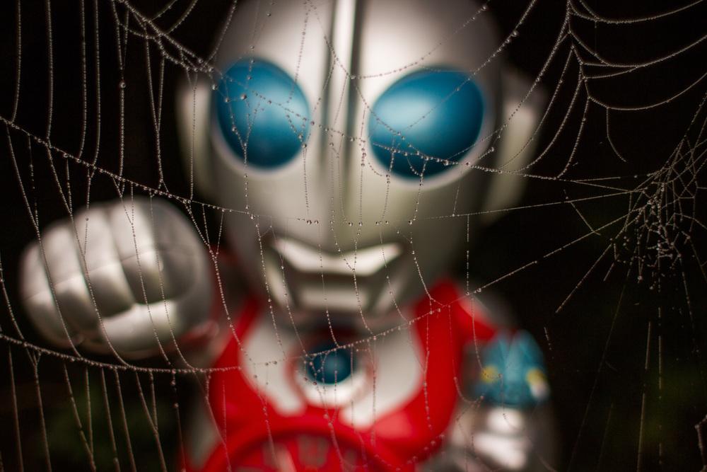 robot spider web.jpg