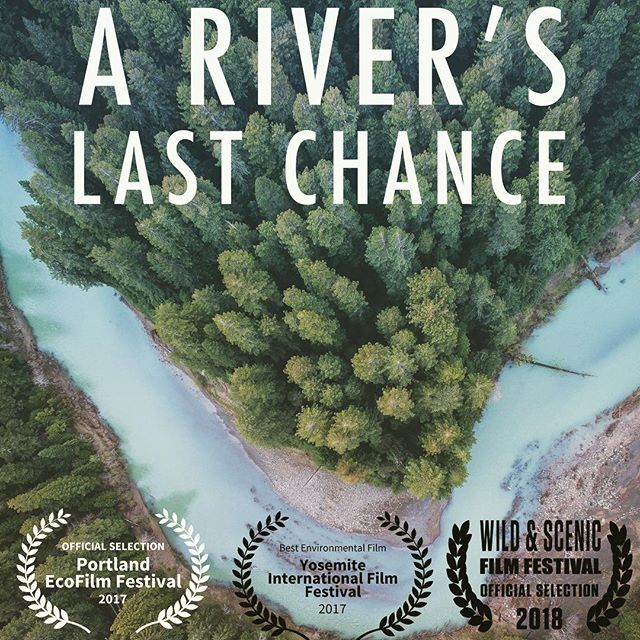 """To my Mendocino family: @lyzarenee00 and I just watched this amazing documentary """"A River's Last Chance"""" on @amazonprimevideo and it's focus is on the Eel River watershed and human impact since the 1850s dealing with Logging, over fishing, ganja world and beyond. It's really a story of the community having the awareness and courage to protect what is sacred in the face of an often merciless drive for profit in a world of greed. If you haven't heard of the film yet I really wish you'd watch it. I Recognized a couple familiar faces in the  film and it really brought Lyza and I back to our time living and working along the Eel in different areas of the county over the years. I remember seeing the salmon spawning or swimming at lunch time after we'd worked the land from early morning. Goodness gracious it's so powerful and inspiring. I really recommend this documentary to anybody concerned with our water resources in America at all. We have a lot to learn if we care about our future 🌲 #ariverslastchance @northforkstudios"""