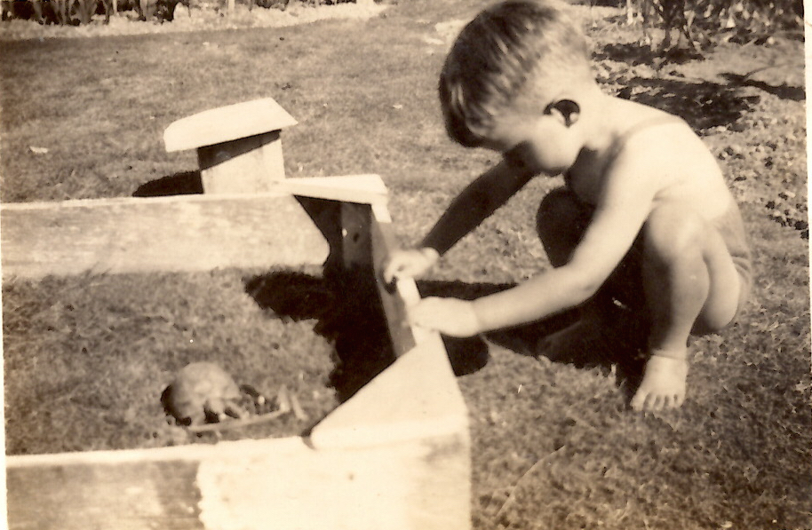 Shona's father, Oliver Riddell, age three in 1944 with Peter the tortoise. When this photo was taken Peter had already been in the Hughes/Riddell family for 30 years, and would remain the family pet for another 50 years.