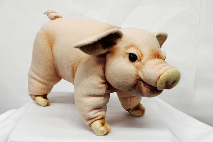 Pig: Cinderella