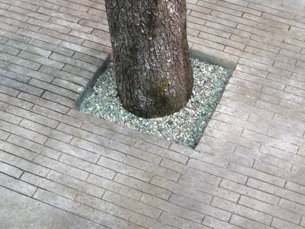 Tree-Base-Detail-9.jpg