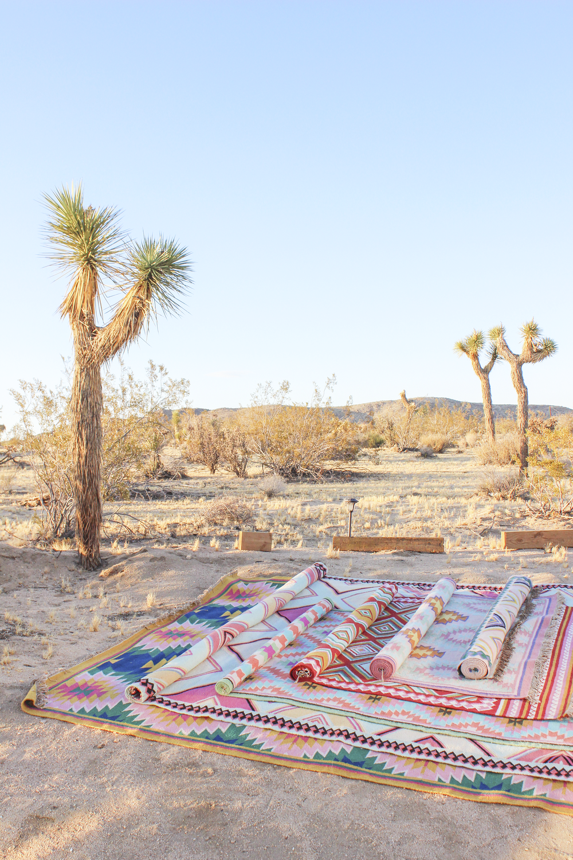 Desert_Rugs_16.png