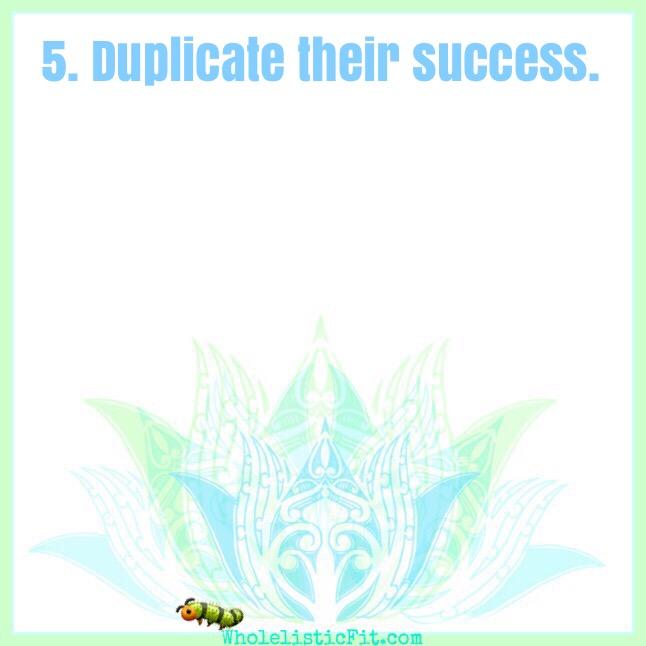 caterpillar5.JPG