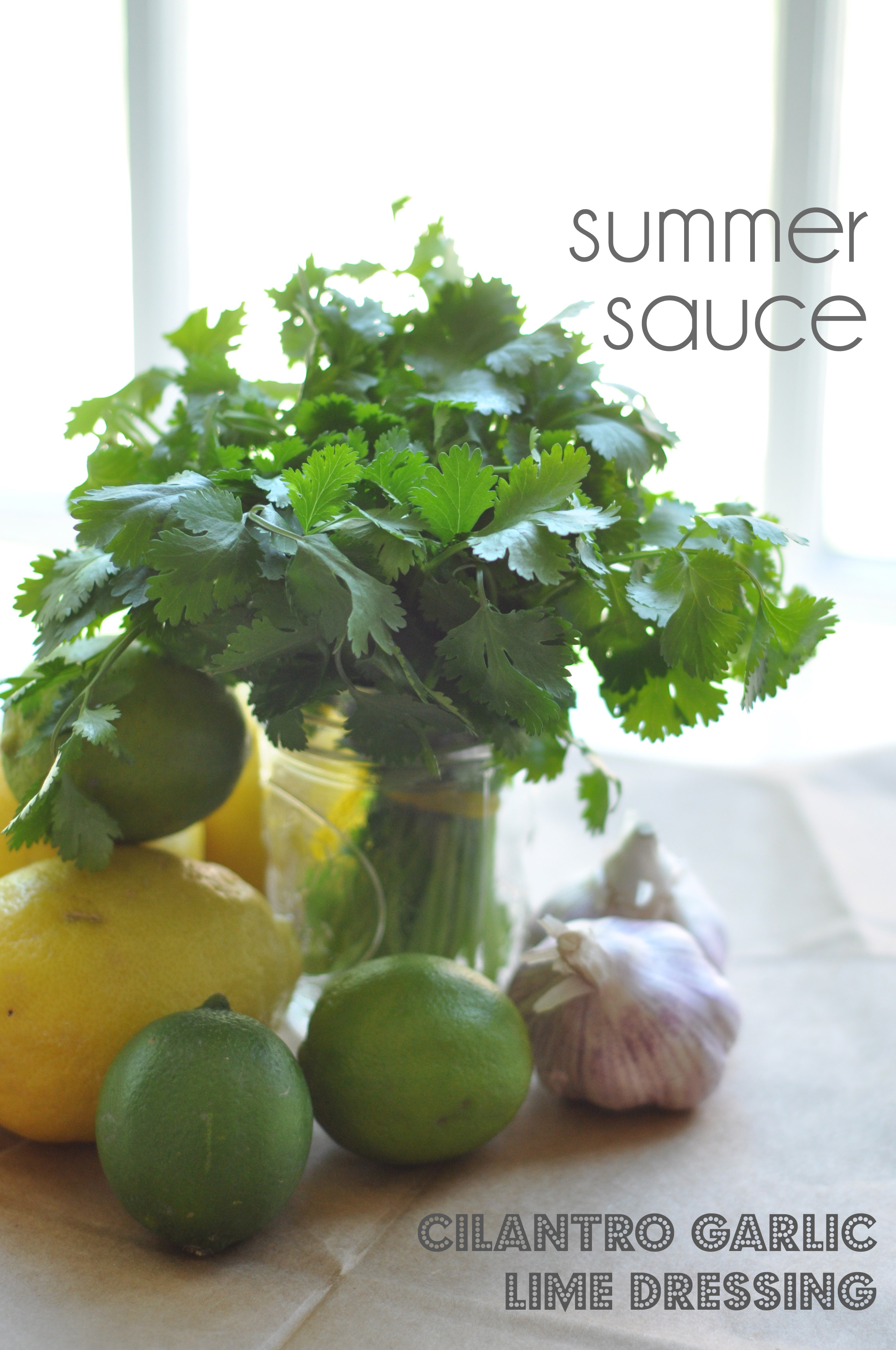 Summer's Special Sauce: Cilantro Garlic Citrus Marinade at Salt & Twine
