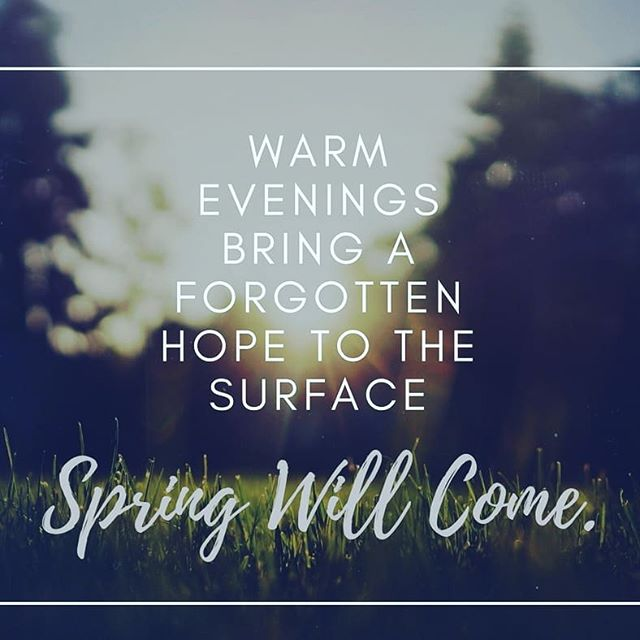 Baby was napping so I played outside with the dogs and cat. Heard the neighbor kids playing hide and seek, smelled dirt and wet grass, felt the touch of a warm breeze on my cheek. My cup was filled.  #thisevidencebasedlife #springiscoming #midwestlife #tinymoments