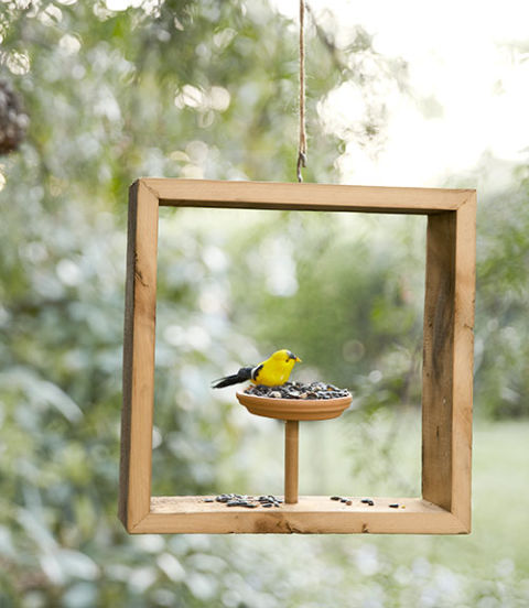 Fun Summer Projects - Birdfeeder