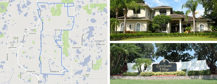 3 Tampa Neighborhoods - Carrollwood Northdale