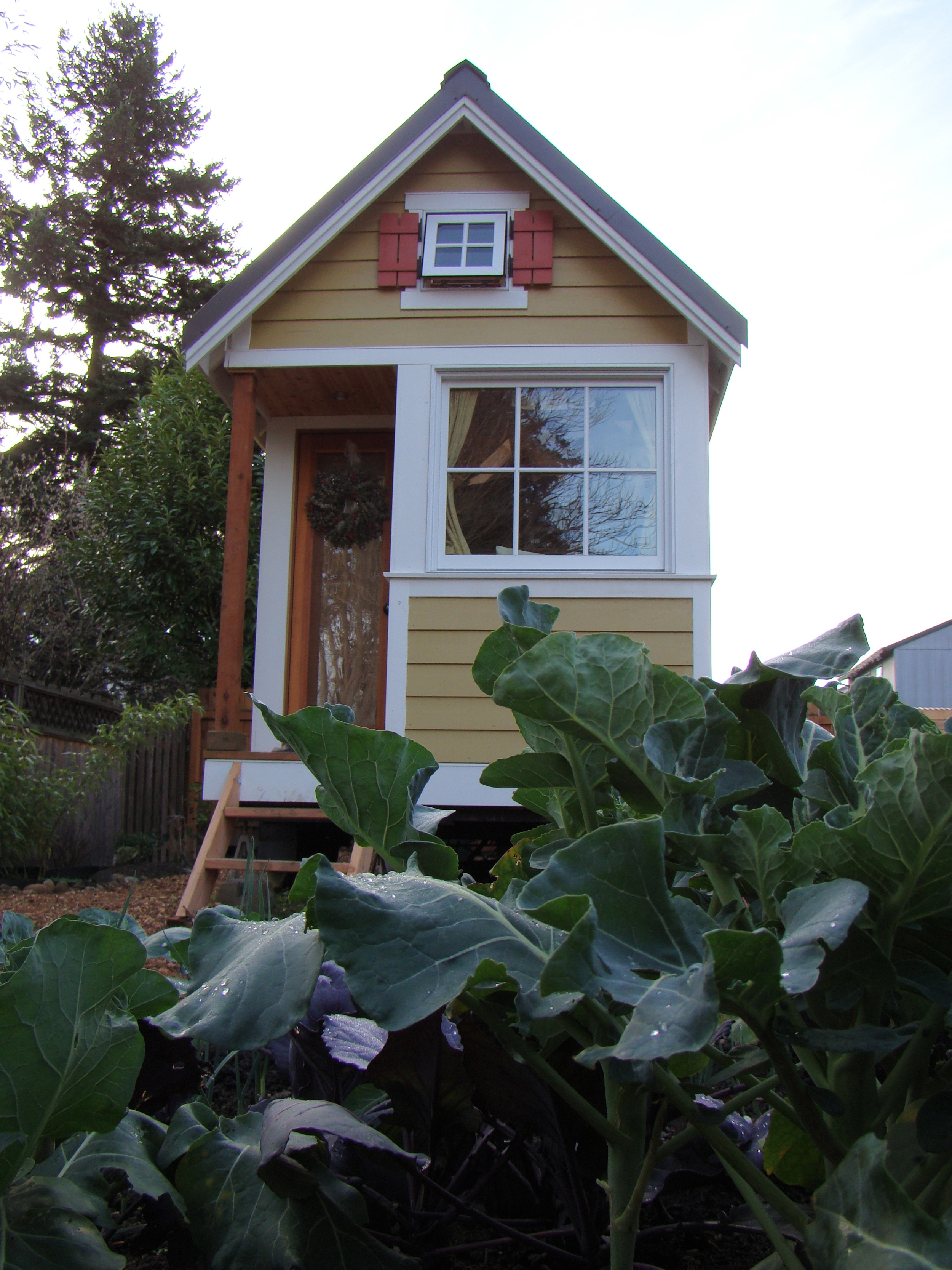 the tiny house I lived in for 10 months