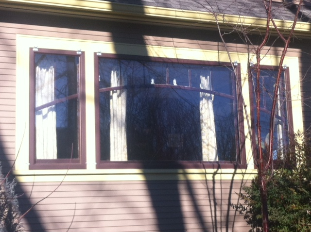 arched trim windows