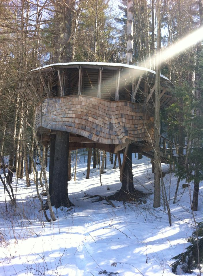 Yestemorrow Treehouse in Sunbeam