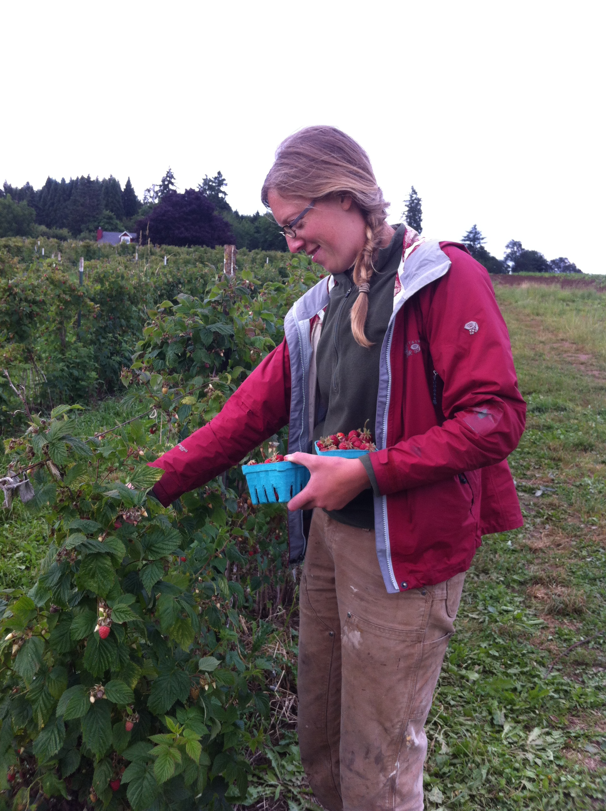 Laura berry picking