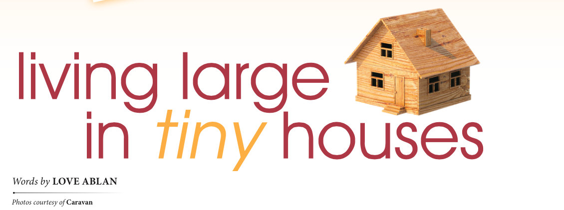 Living Large in Tiny Houses Graphic