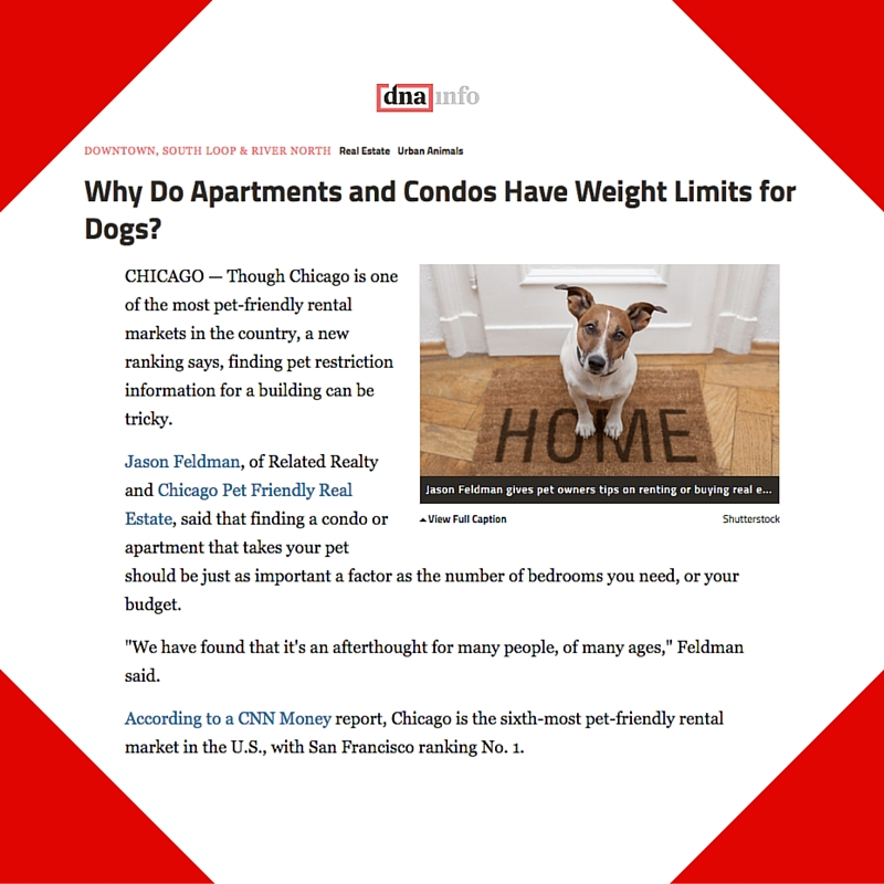 June 1, 2015 - DNAinfo Placement for Chicago Pet Friendly Real Estate