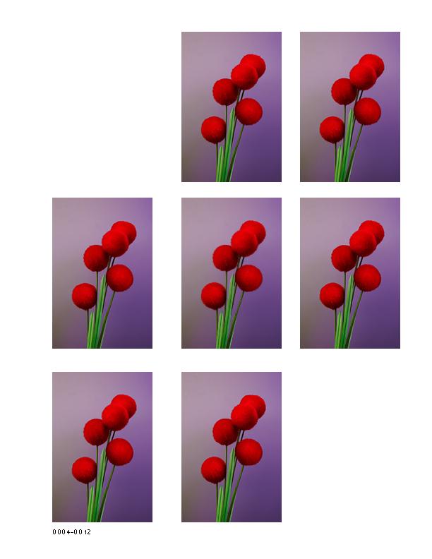 Flowers 4_1075x825_0314157.jpg