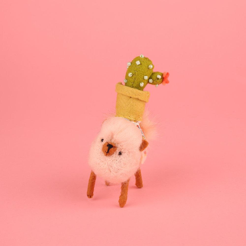 cactus_1.jpg