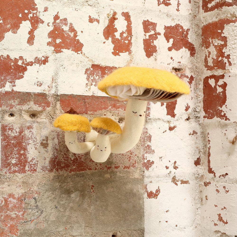 yellowmushies.jpg