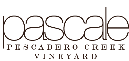 Pescadero Creek Vineyard