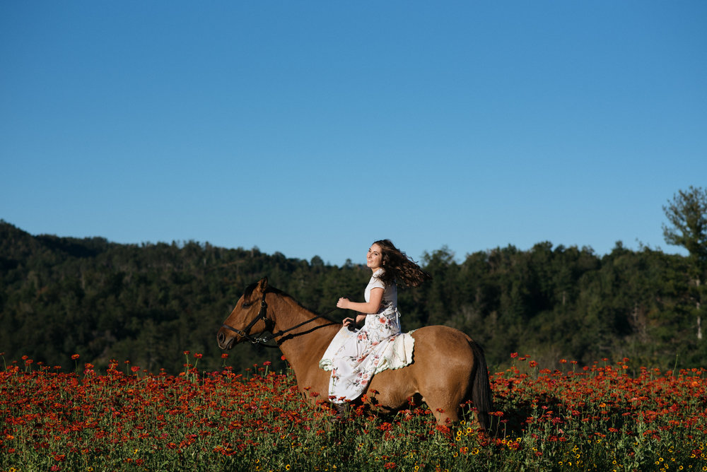 girl riding horse in flowers