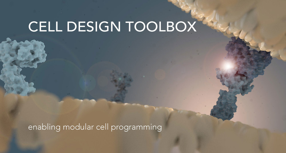 cell-design-toolbox-1100h.jpg