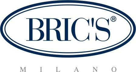 Brics_logo_low1.jpg