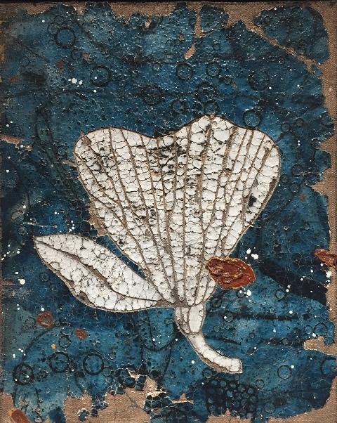 Aqua Flora 1