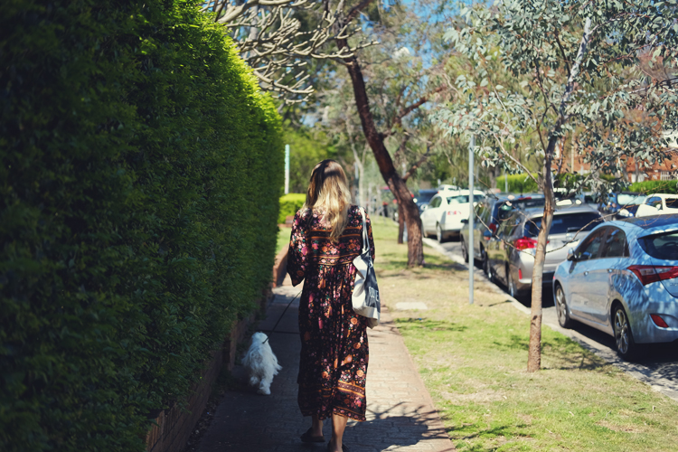 rose bay walk.jpg