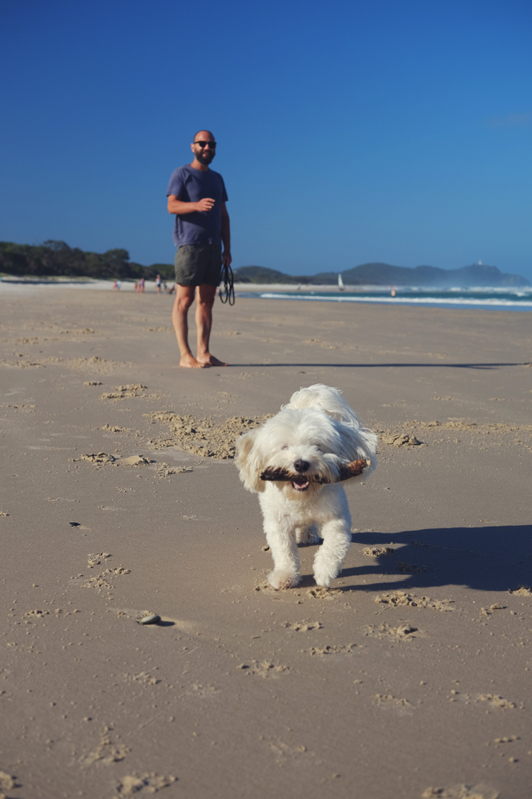 Sufflok Park Dog Beach Byron Bay 01.jpg