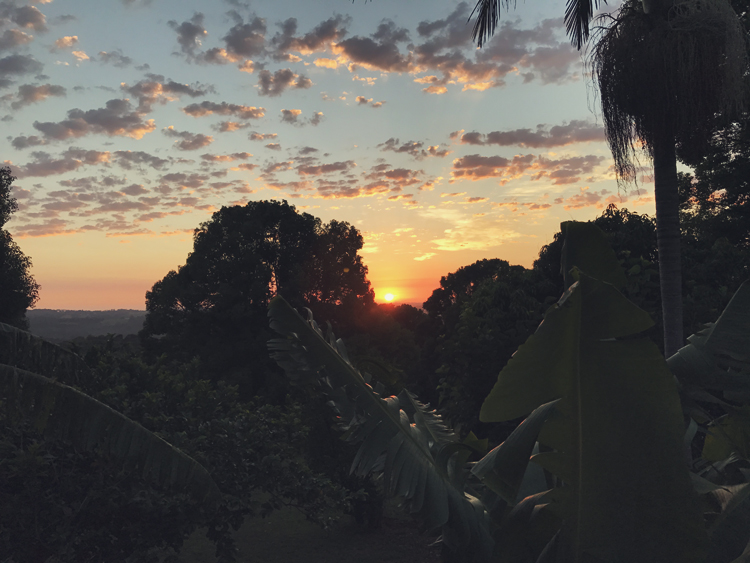 byron hinterland sunrise.jpg