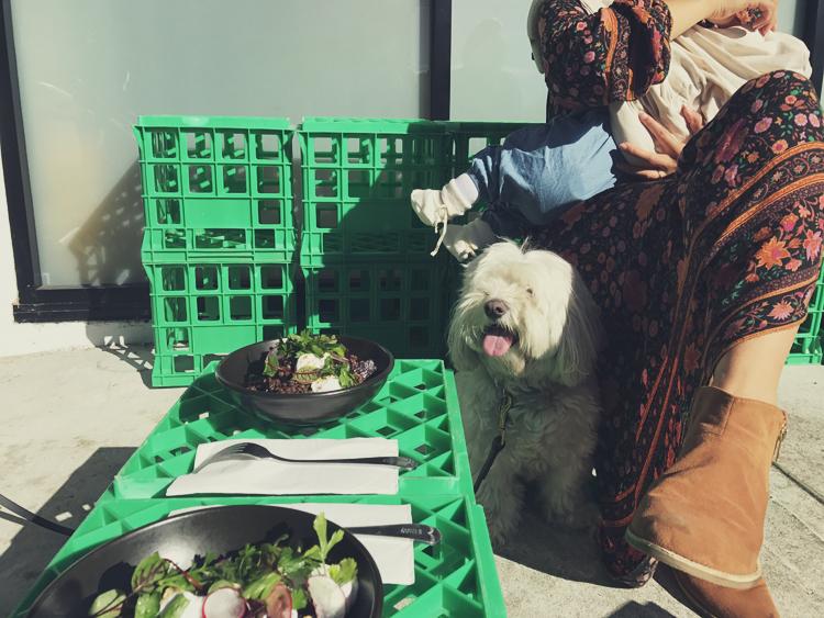 vegan family sydney.jpg