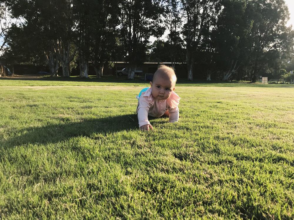 vegan baby sydney 9 months old 03.jpg