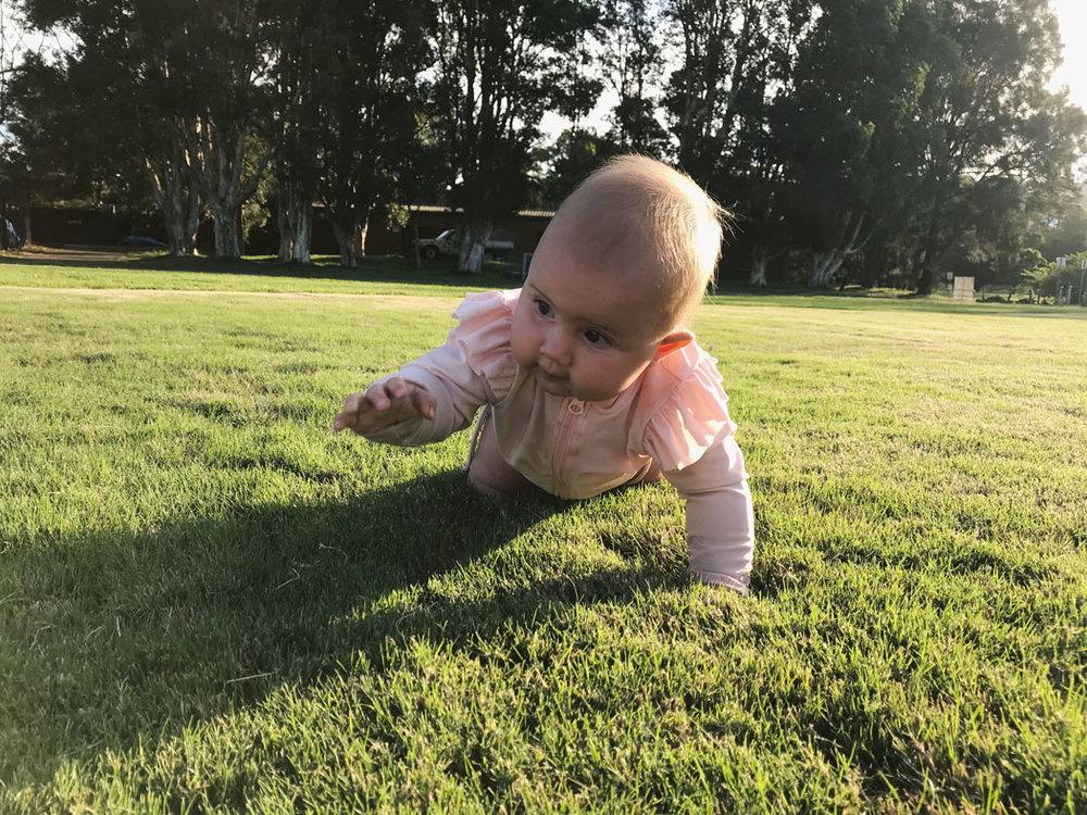 vegan baby sydney 9 months old 02.jpg