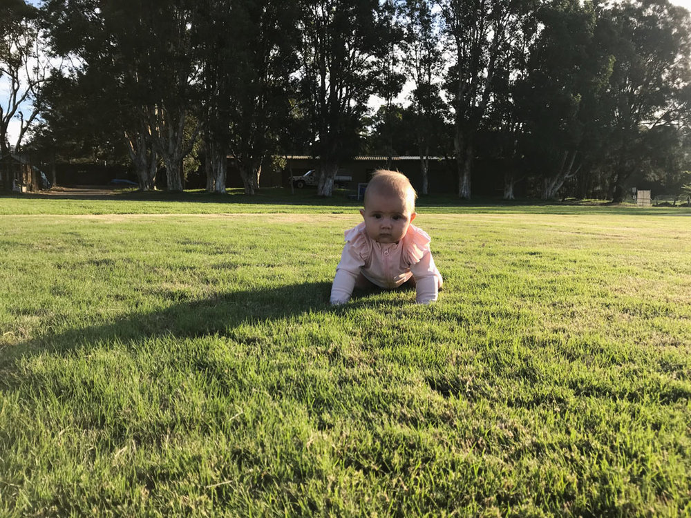vegan baby sydney 9 months old.jpg