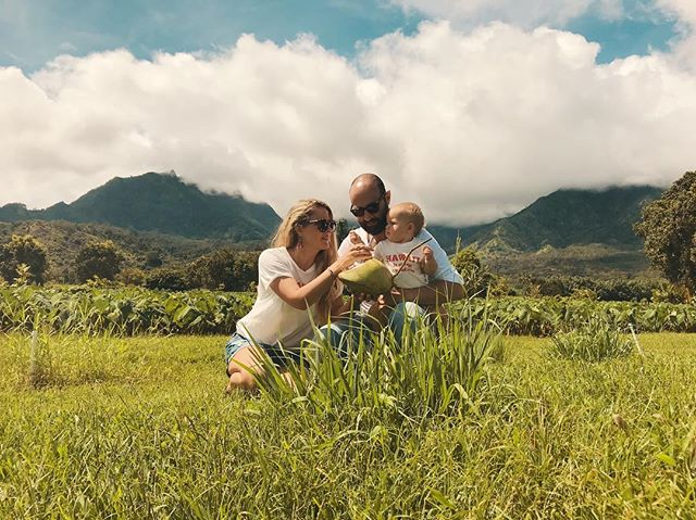Sitting in taro fields, sipping coconuts! In other news: The first round of photos of our Kauai trip is now on the blog 🥥👆🏼link in profile🖕🏻🥥 #plantbasedfamily #hanalei #consciousparenting #greenliving #veganbaby #veganmum #coconutsarelife