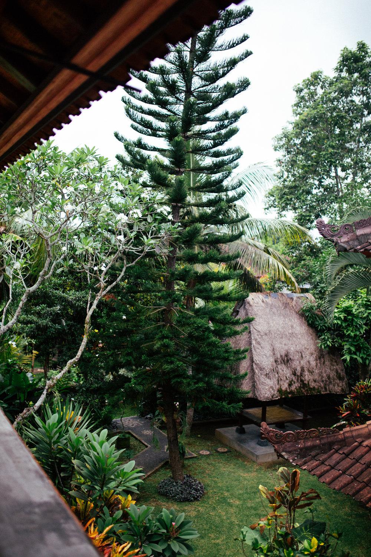 Bali-Travel-Web-33.jpg
