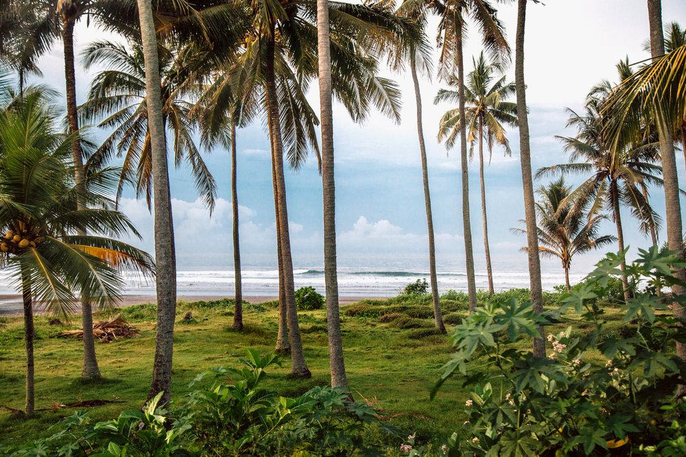 Philip-Nix-Bali-Indonesia-23 copy2.jpg