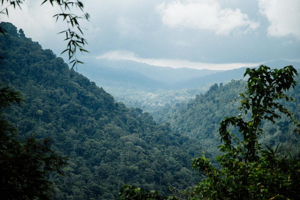 Bali-Travel-Web-5.jpg