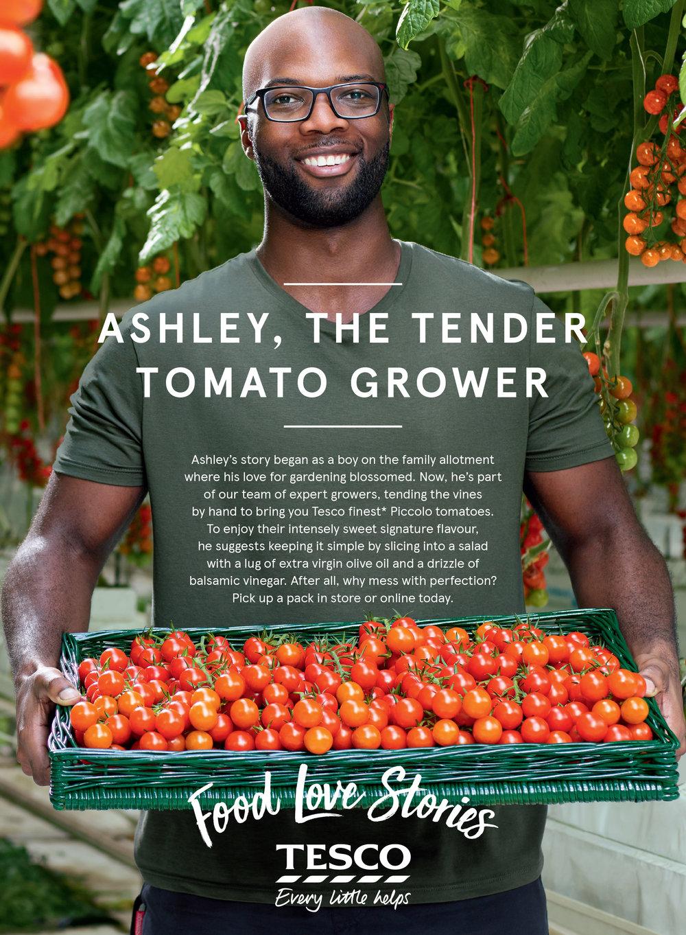55657_Tomatoes_286x210.jpg